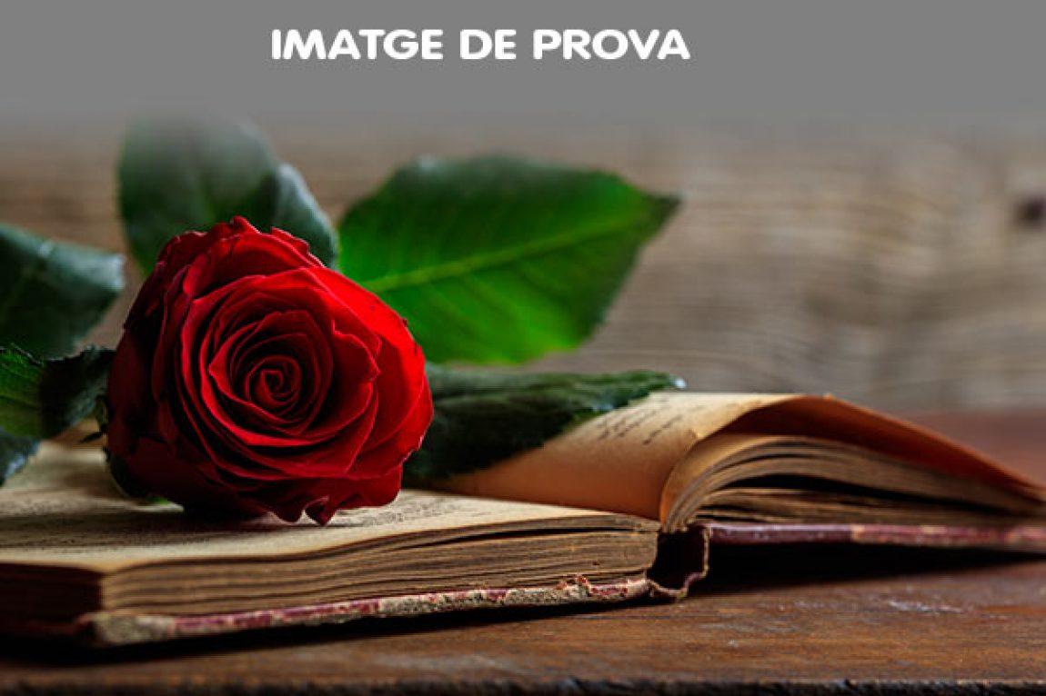 DIA DE SANT JORDI, els llibres i la lectura